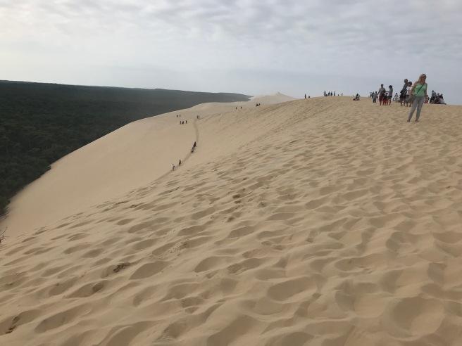 dune11.jpg